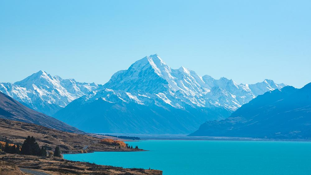 How has New Zealand harnessed the power of domestic travel to save its tourism sector?